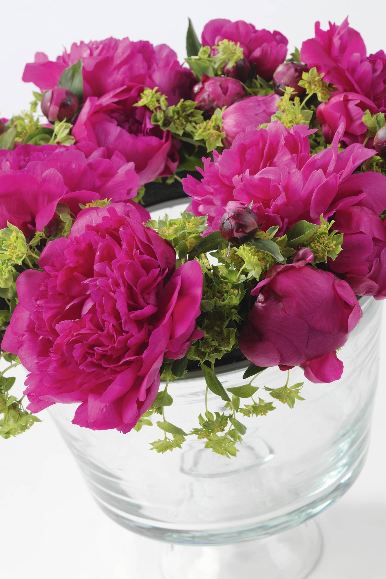 PIVOINE BOUQUET